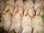 Свежее (не замороженное) мясо перепелов